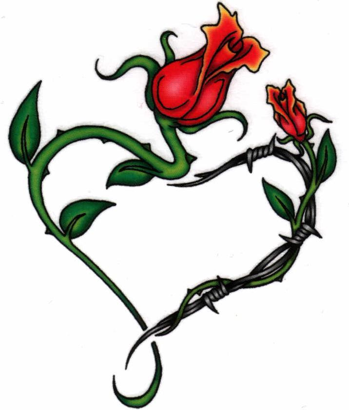Rose Vines Drawings Drawings of Rose Vines