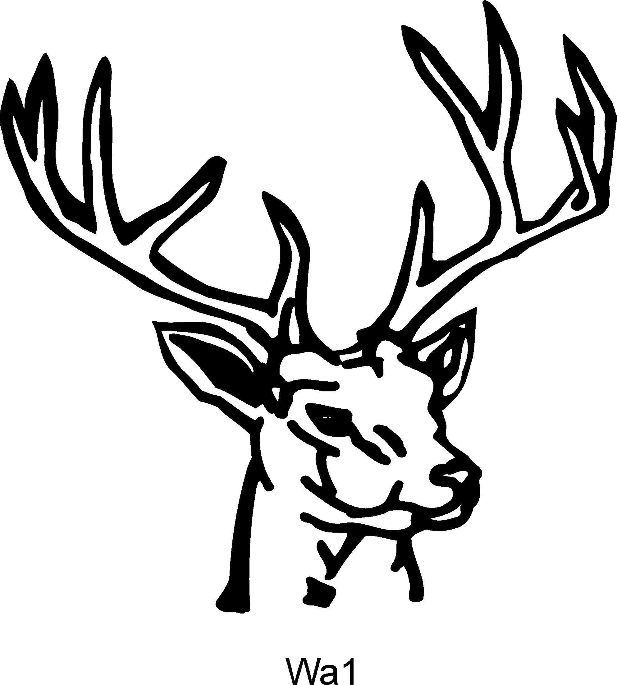 Line Art Deer : Deer head drawings clipart best