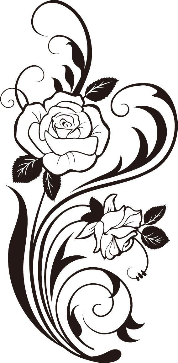 Rose Vines Drawings ClipArt Best