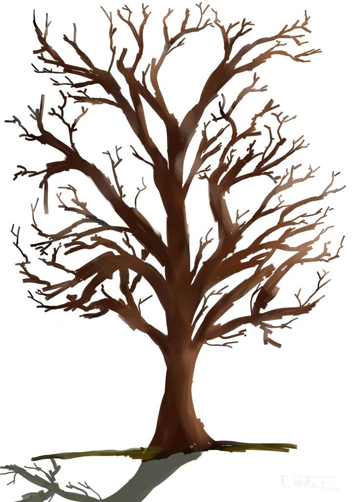 bare fall tree clip art - photo #35
