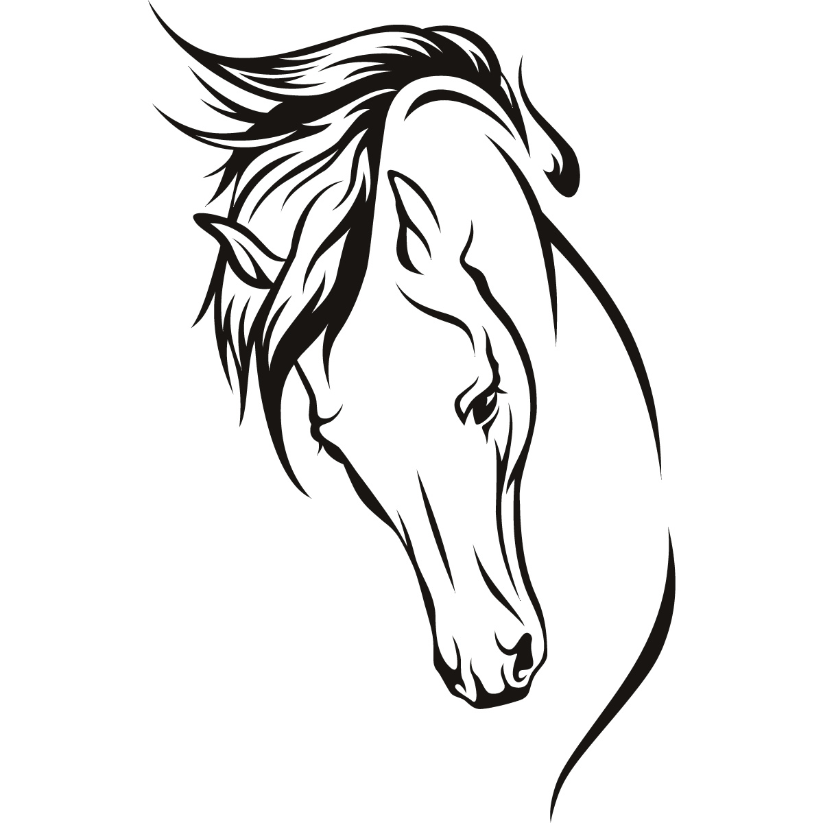 Line Drawing Horse Head : Horse line drawing clipart best