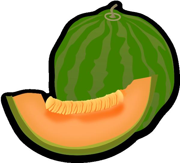 Honeydew Melon Drawing - ClipArt Best Honeydew Melon Clip Art