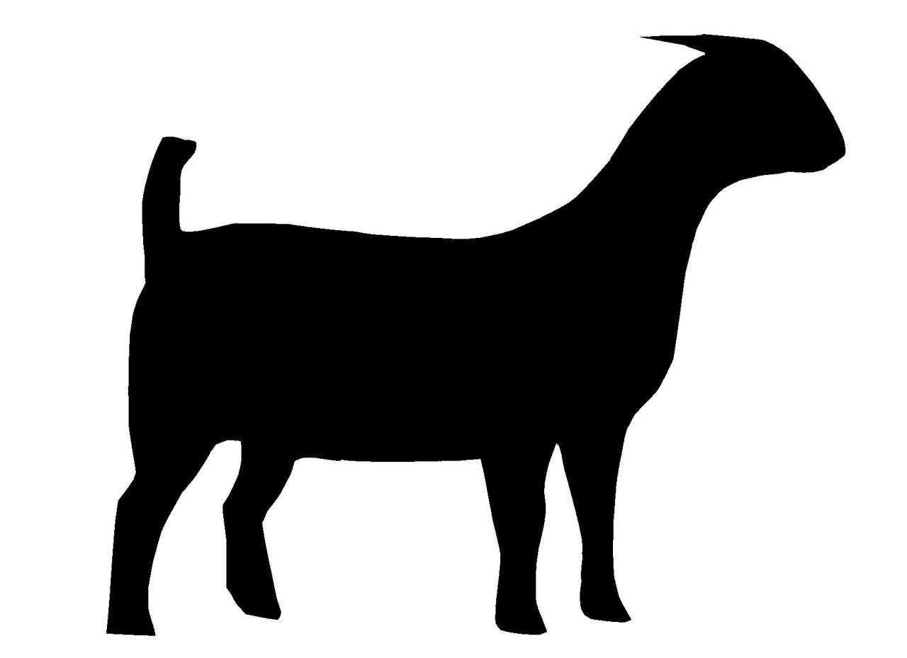 show pig silhouette clipart best