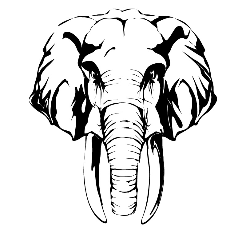 Line Drawing Elephant Face : Elephant head drawing clipart best