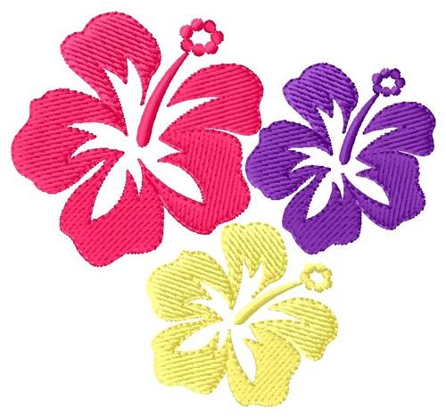 Hawaiian Designs Amazoncom