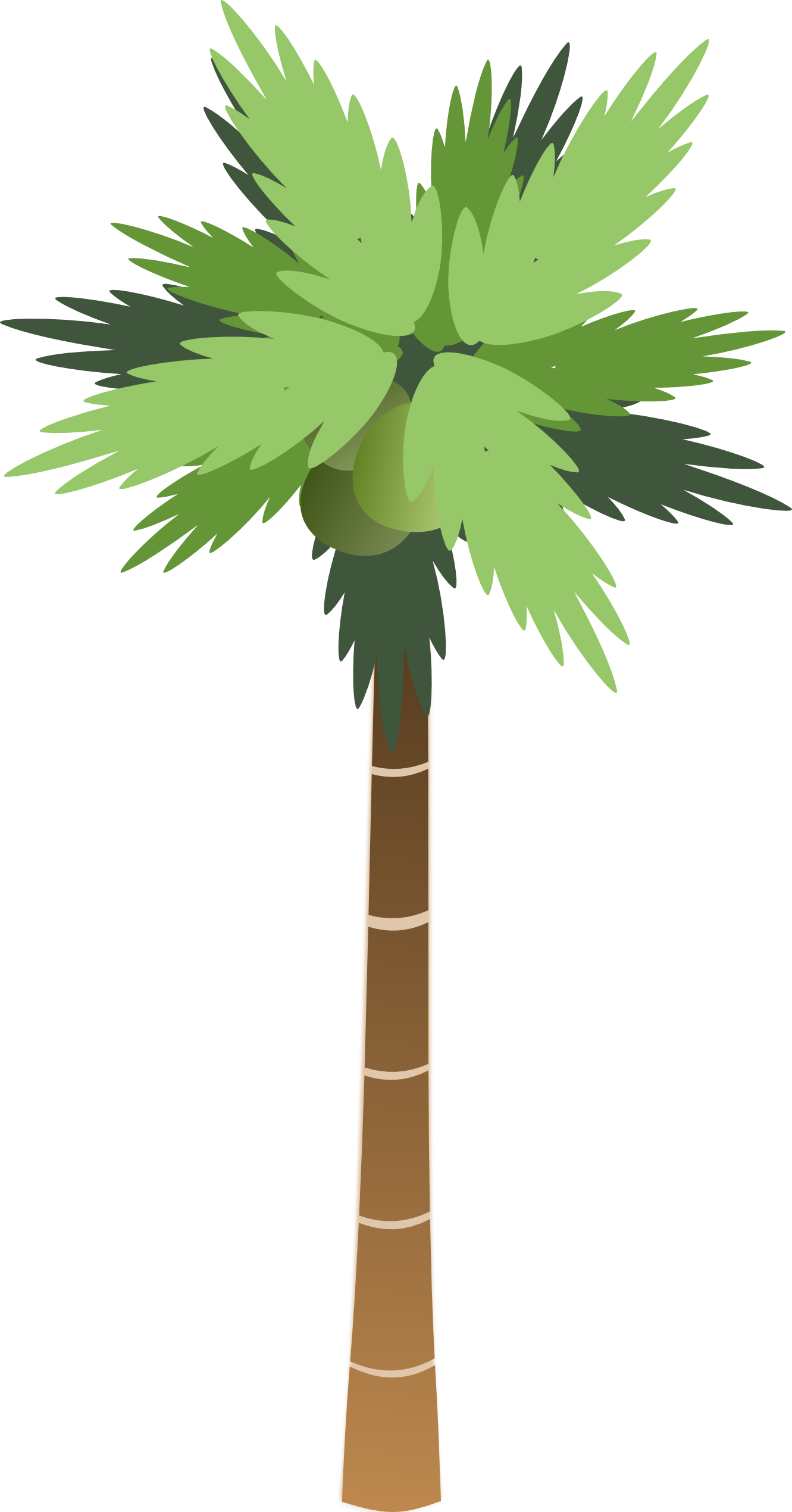 Palm Trees Cartoon Images - ClipArt Best