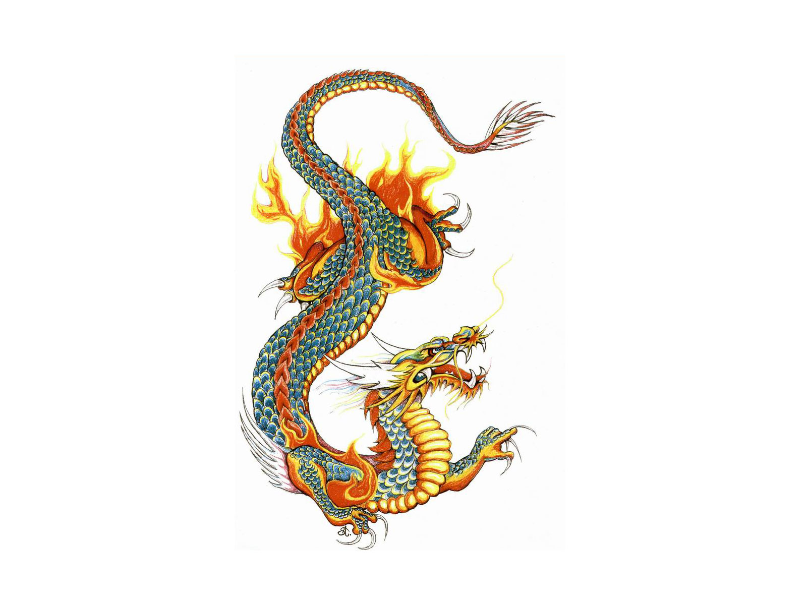 dragon tattoo pictures free clipart best. Black Bedroom Furniture Sets. Home Design Ideas