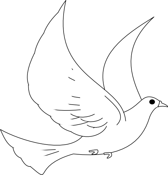 Turtle dove drawing clipart best for Turtle dove template