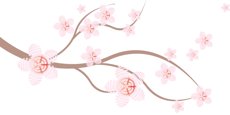 Cherry Blossom Vector - ClipArt Best