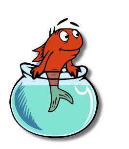 Follow your bliss one fish two fish clipart best for High hat fish