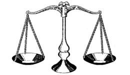 Government Checks and Balances Chart
