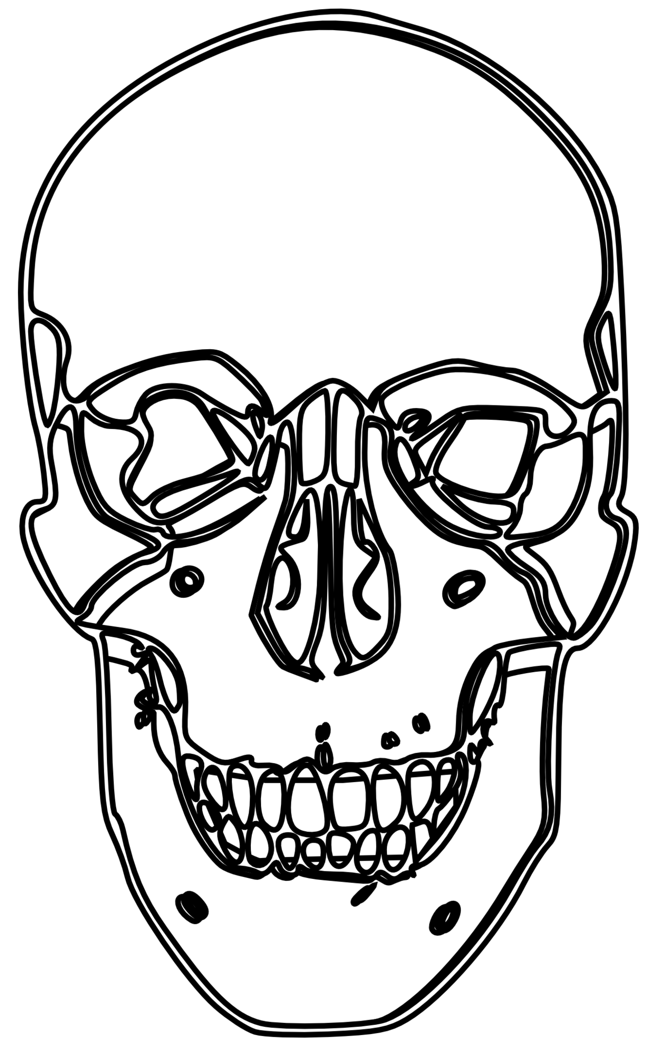 Line Art Skull : Skull line drawing clipart best