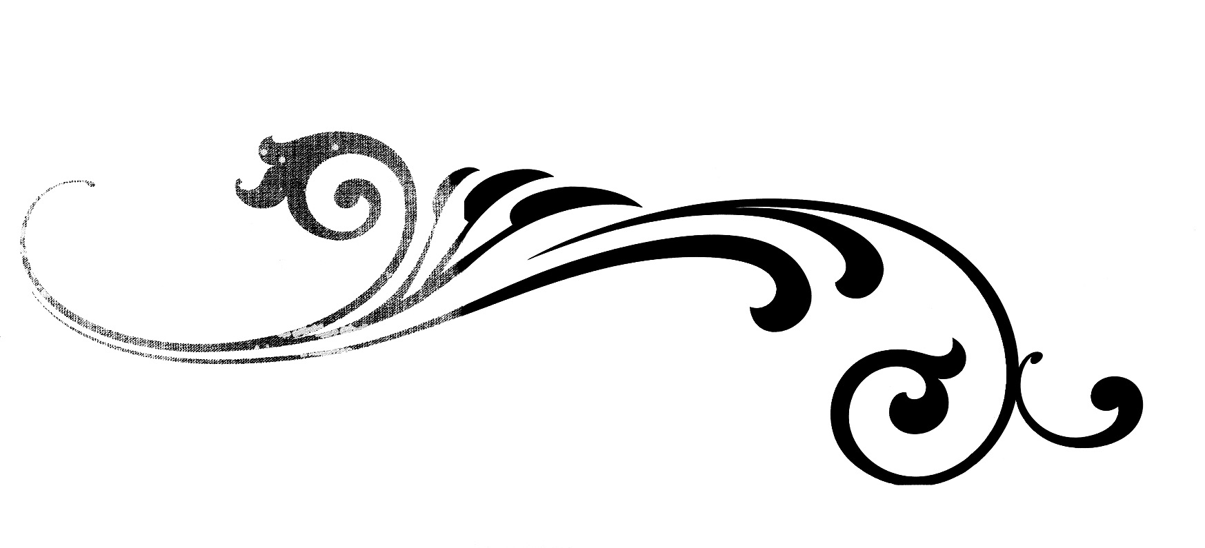 Calligraphy flourish vector clipart best