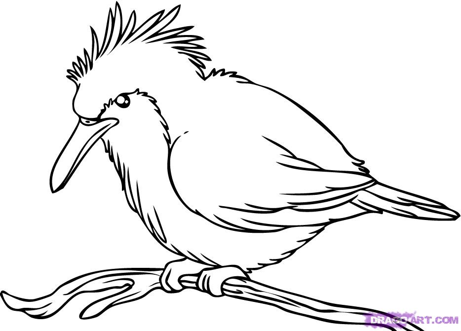 Line Art Birds : Line drawing birds imgkid the image kid has it