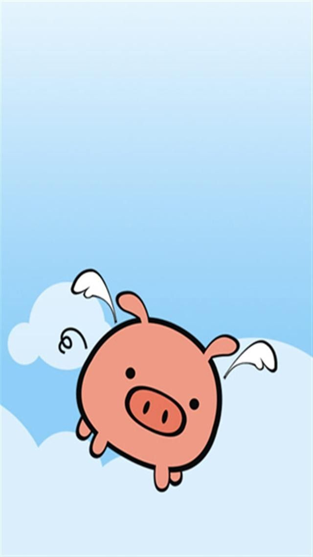 pig wallpaper iphone