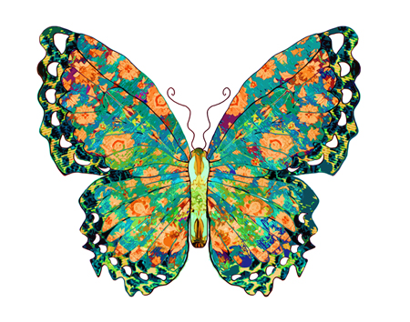 butterflies research papers