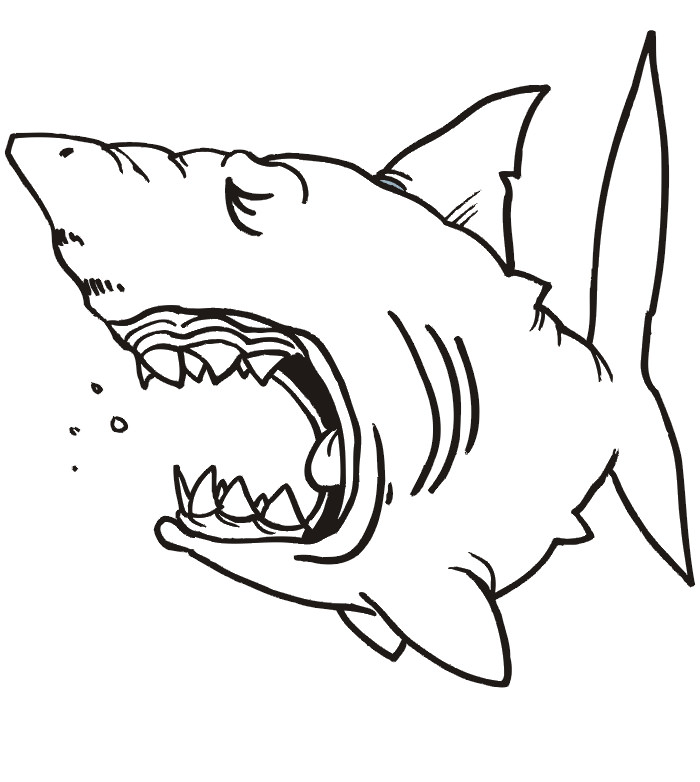65 sea creature templates printable crafts u0026amp colouring pages shark - Coloring Pages Sharks Print