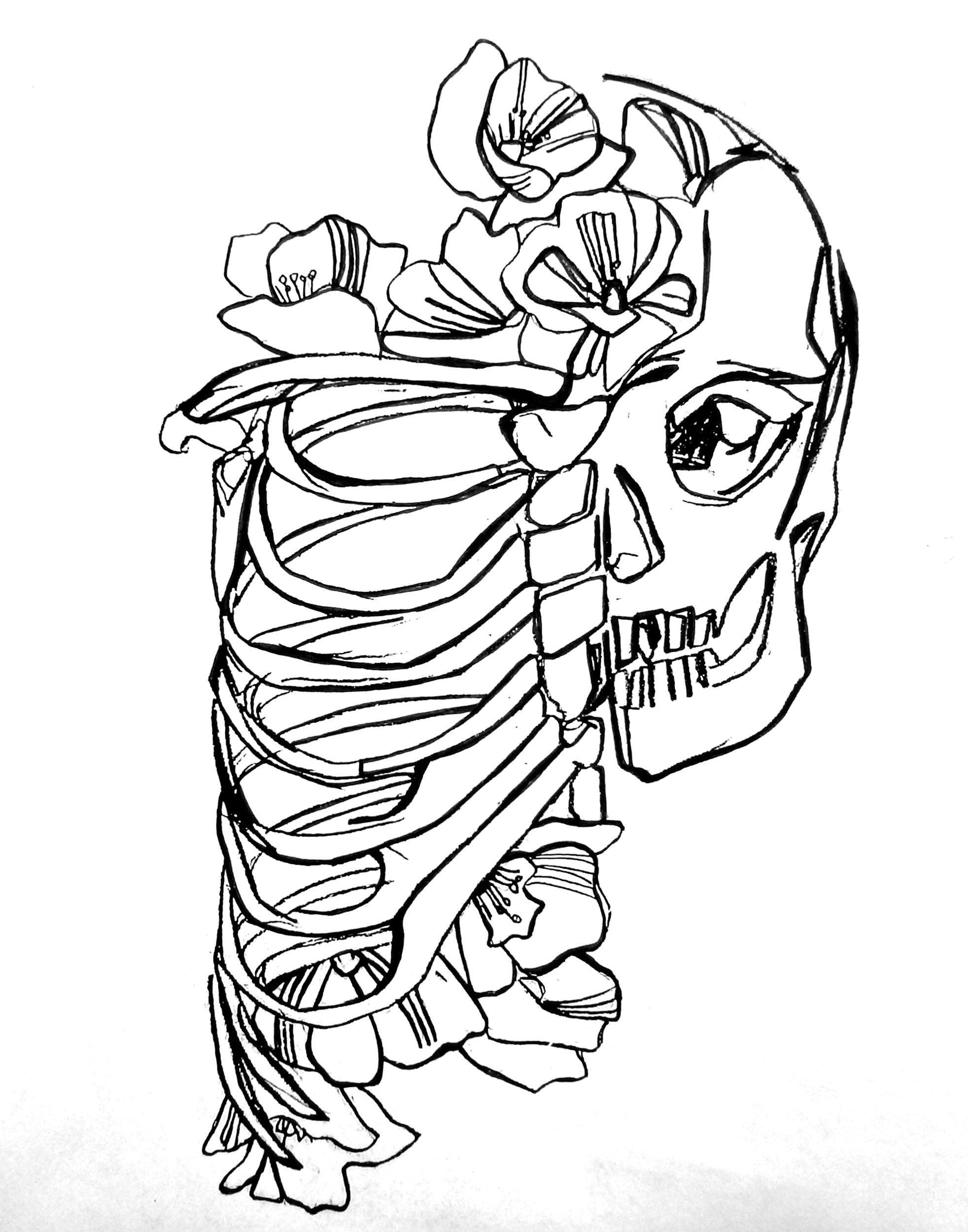 Rib Cage Line Drawing Mixing Themes | Artjaden