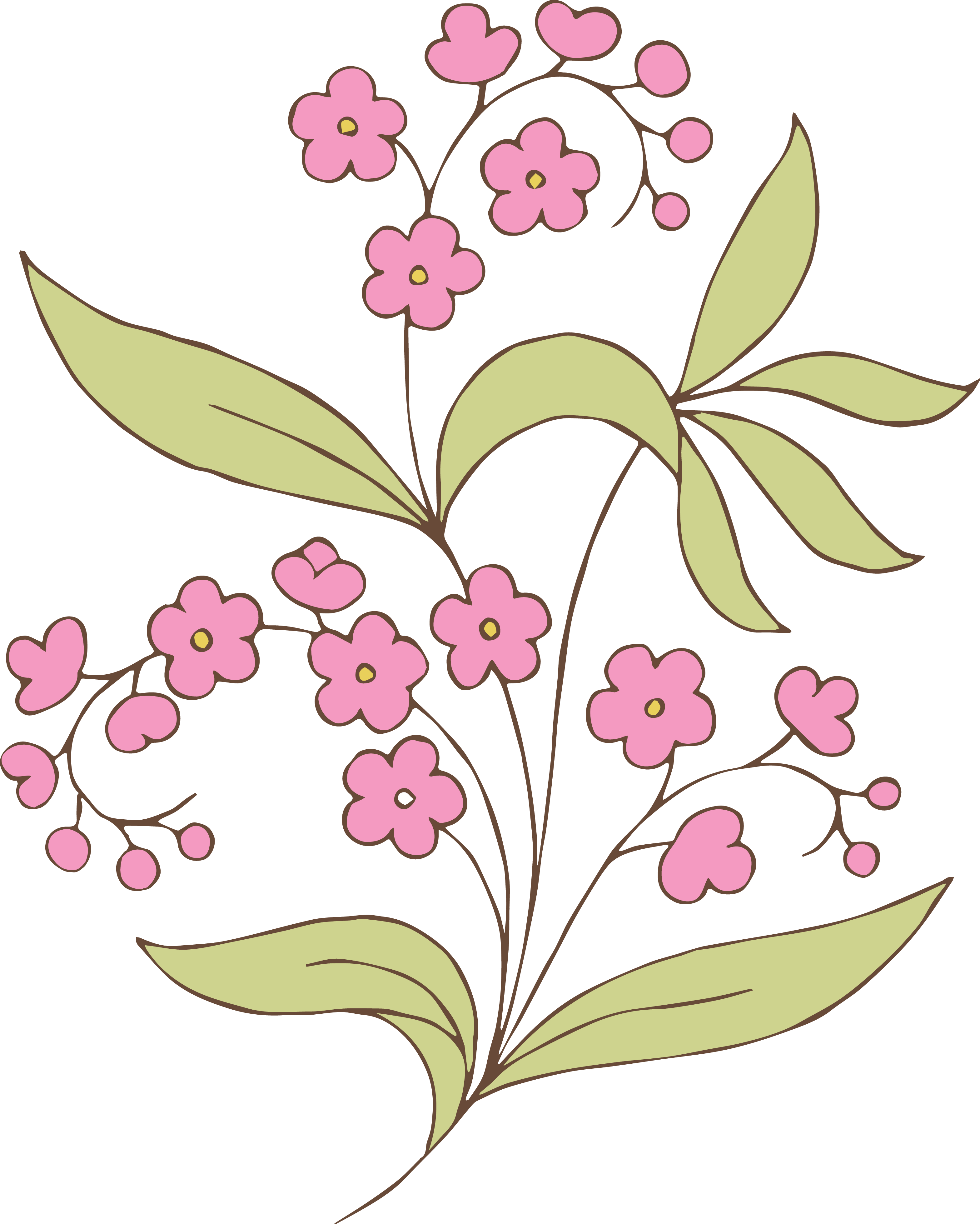 Vintage Illustration - Floral & Fruit Swag | Oh So Nifty Vintage ...: www.clipartbest.com/clipart-RcAyEzgei