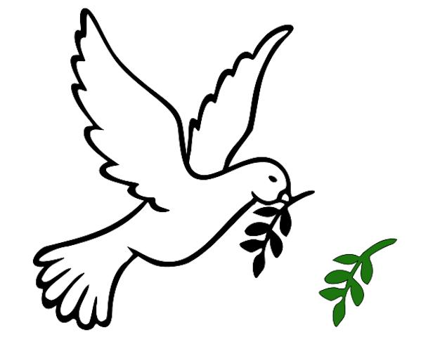 Dove Bird Sketches Clipart Best
