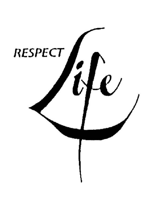 respect life essays