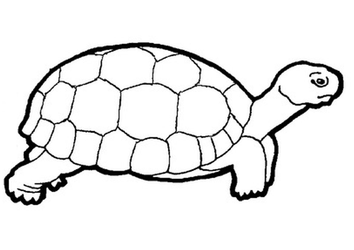 St  Outlines besides Gambar Gunting further Drawings Of Tortoises moreover Printable Starburst Template likewise Coloring Driving. on searching 2018