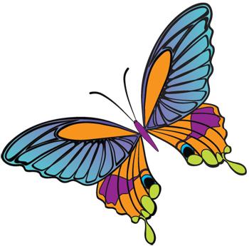 butterfly graphic design idea clipart best