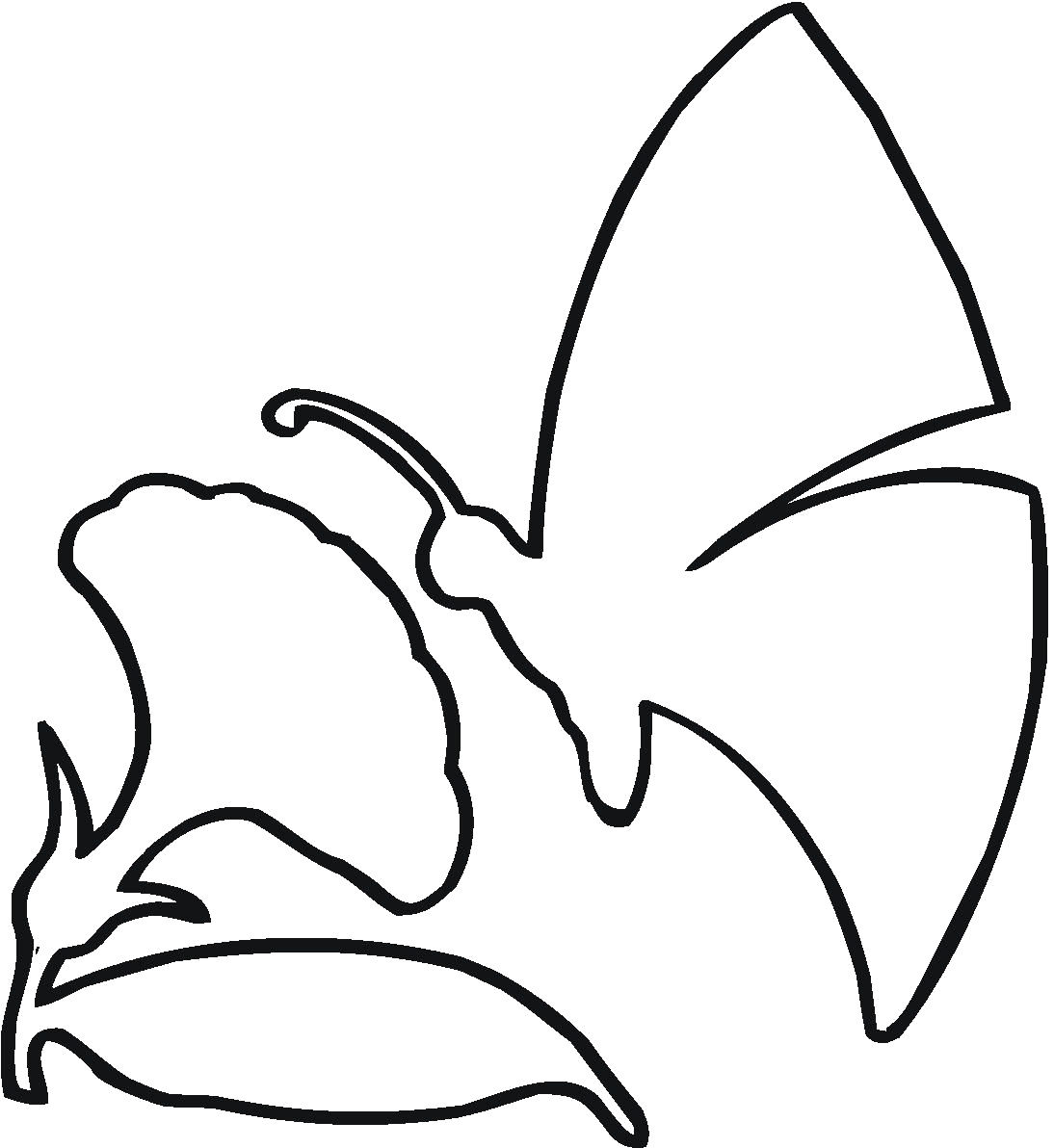 Flower outlines for coloring clipart best for Flower outline coloring page