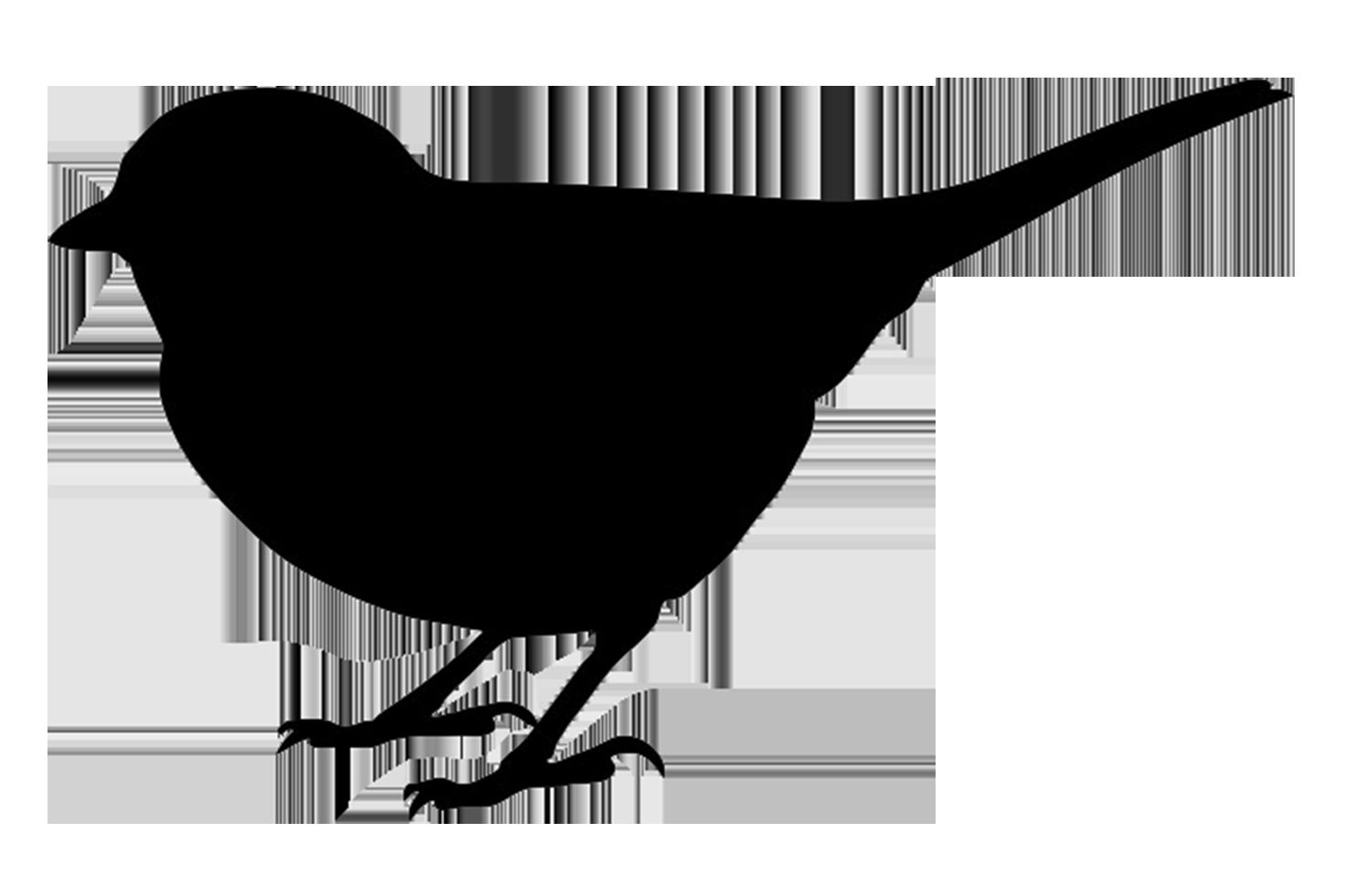 Massif image with regard to bird silhouette printable