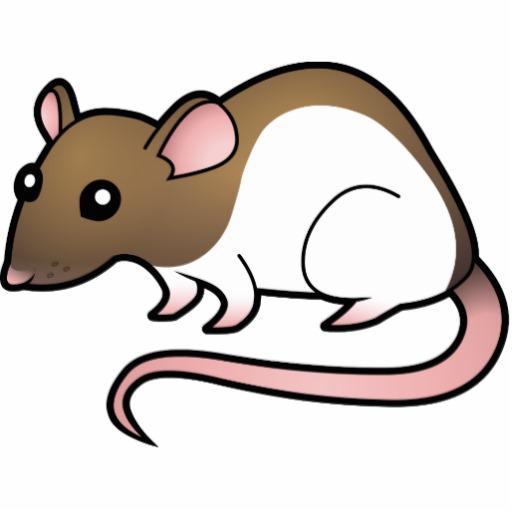 cute rat wallpaper art - photo #27