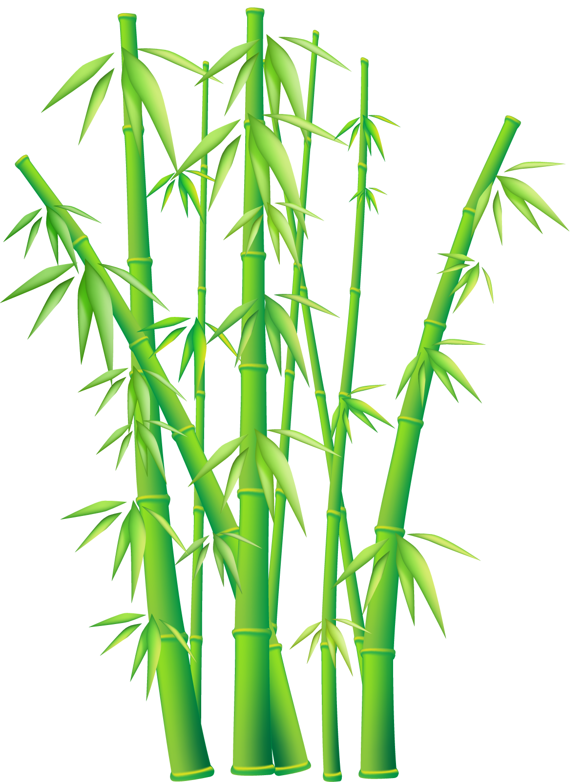 Bamboo Art Design : Bamboo border free download clipart best