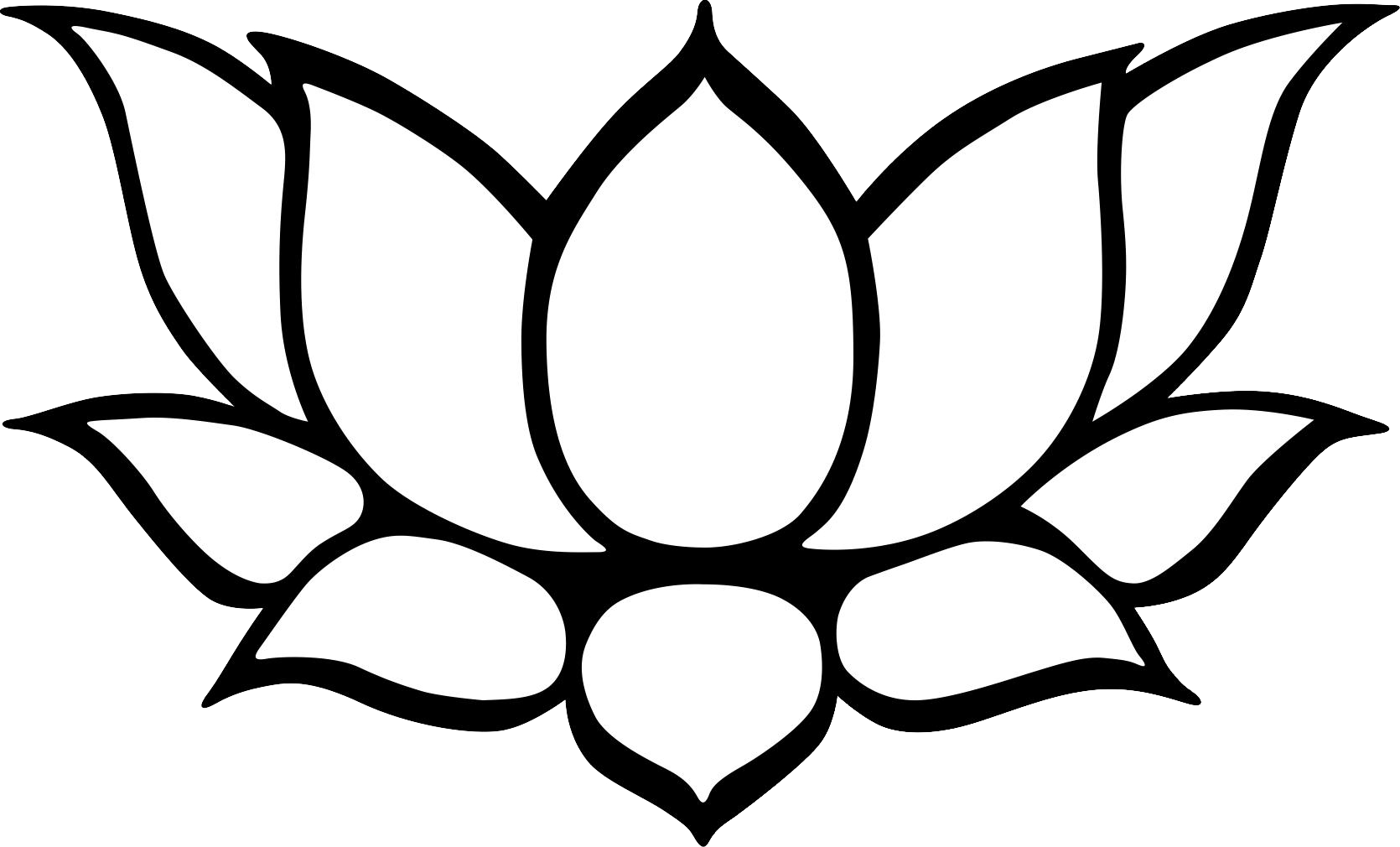 Black And White Line Drawing Flower : Lotus drawing black and white clipart best