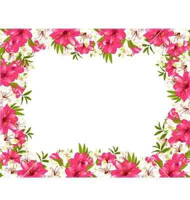 pretty pink border floral - photo #42