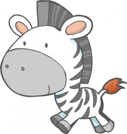 Cute Baby Zebra Pictures