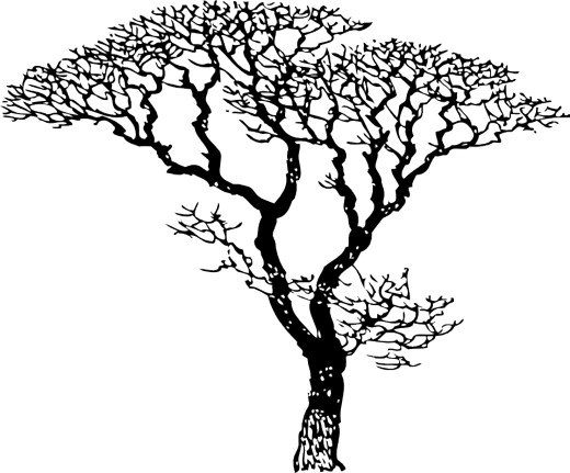 Black And White Tree Drawing ClipArt Best