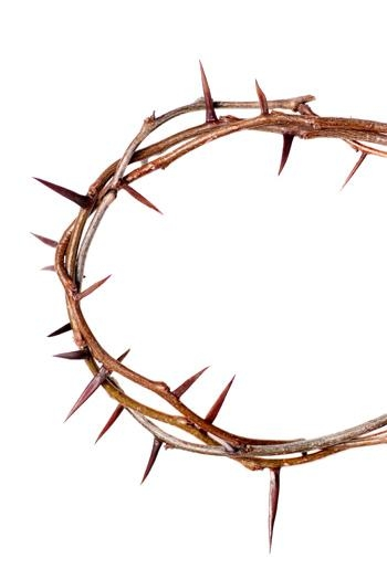 the crown of thorns clipart best crown of thorns clipart black and white cross with crown of thorns clipart