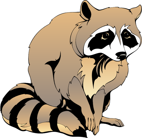 12 racoon clipart . Free cliparts that you can download to you ...