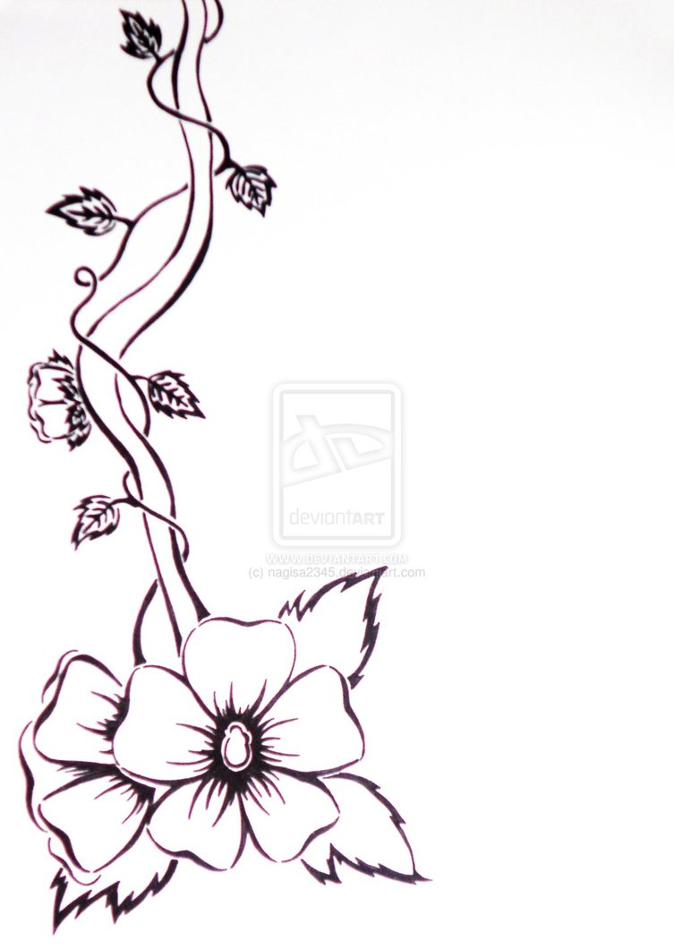 Flower Vine Line Drawing : Vine line drawing imgkid the image kid has it
