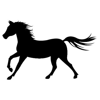 Cheval png clipart best - Clipart cheval gratuit ...