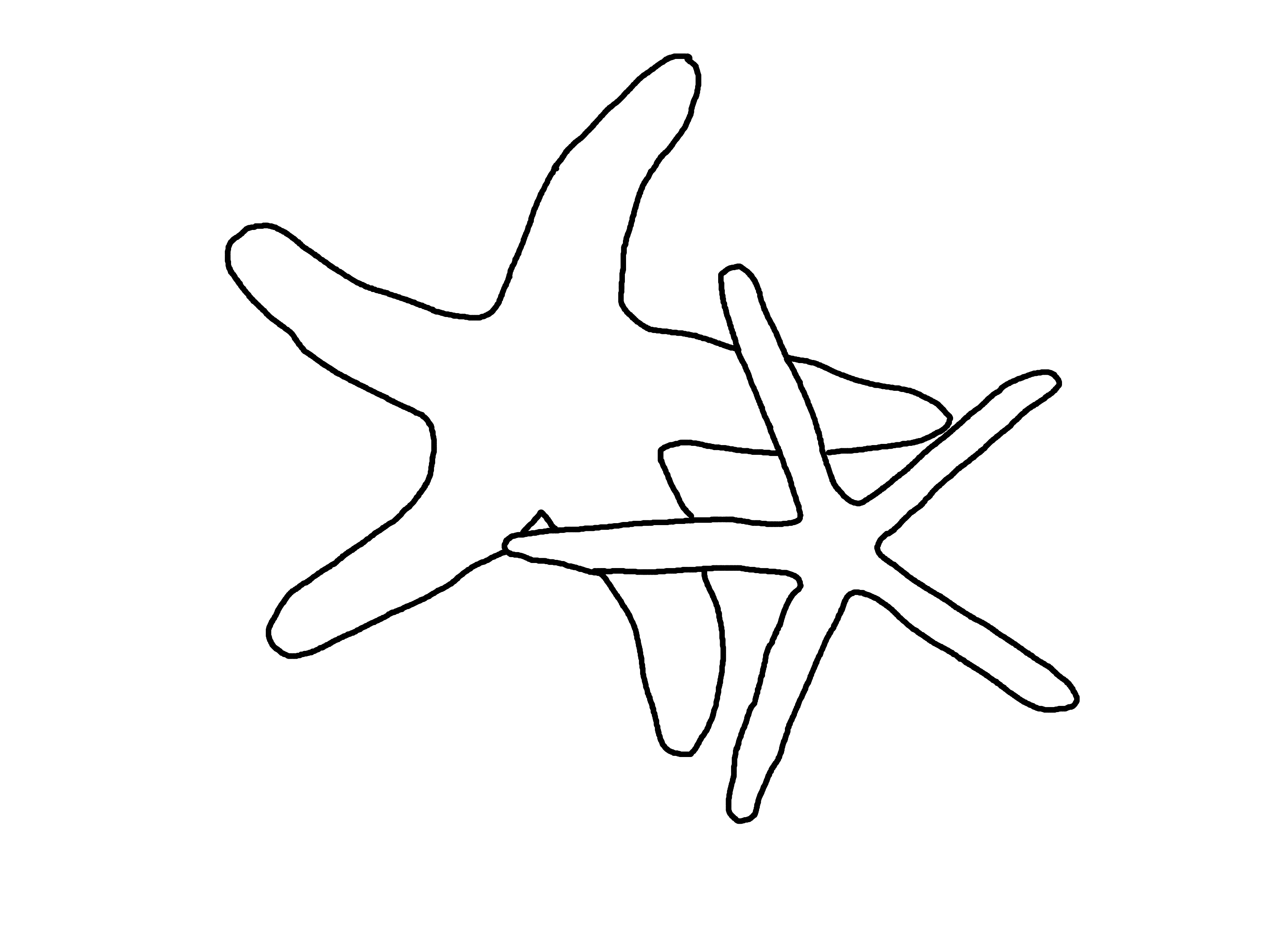 Starfish Outline Png Starfishes Outline