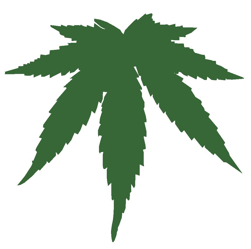 marijuana leaf clip art clipart best seaweed illustration vector seaweed border vector