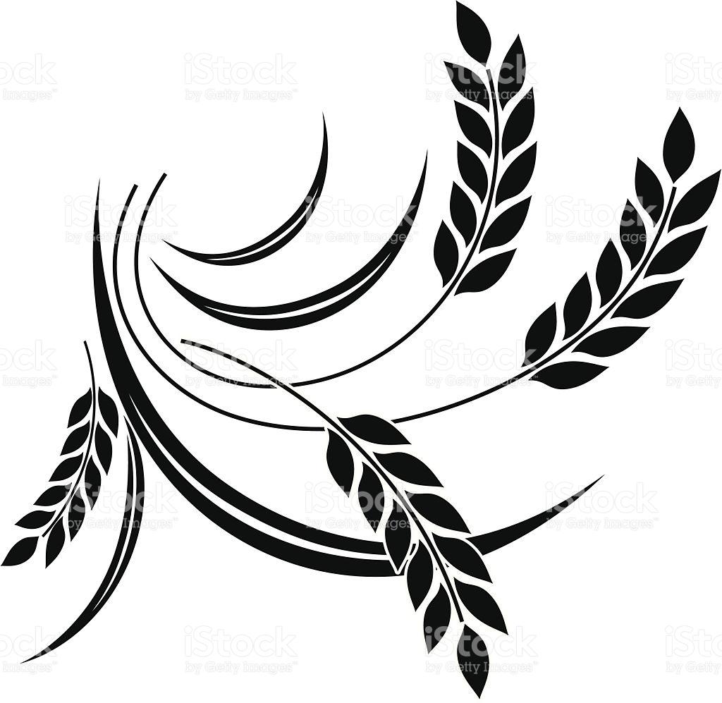 wheat vector clipart best