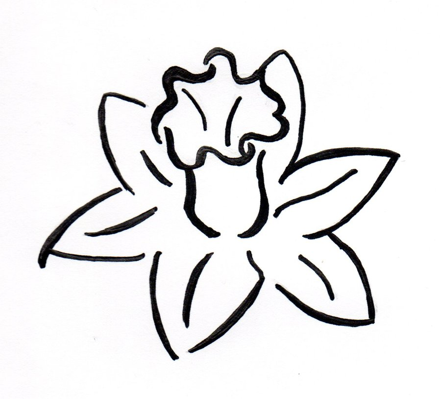 Daffodil Clip Art Black And White - ClipArt Best