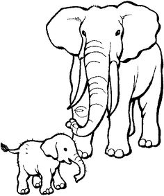 Wild Animals Pictures Outline