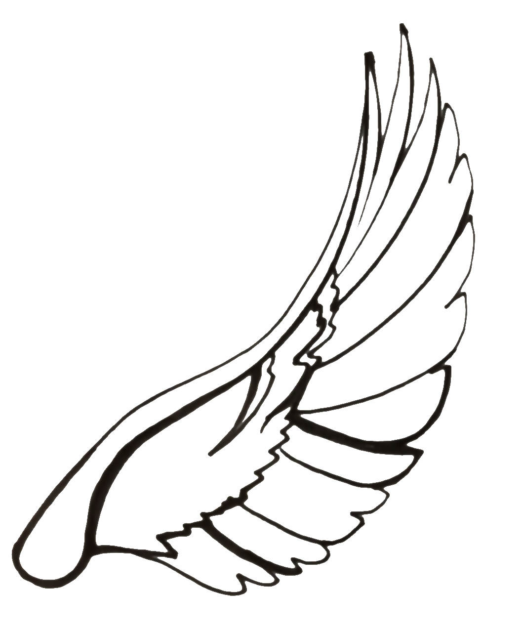 Line Drawing Wings : Line drawing wings clipart best