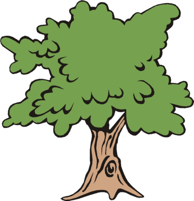 PARTS OF PLANT :: TREE :: BRANCHES :: KINDERGARTEN WORKSHEET GUIDE ...