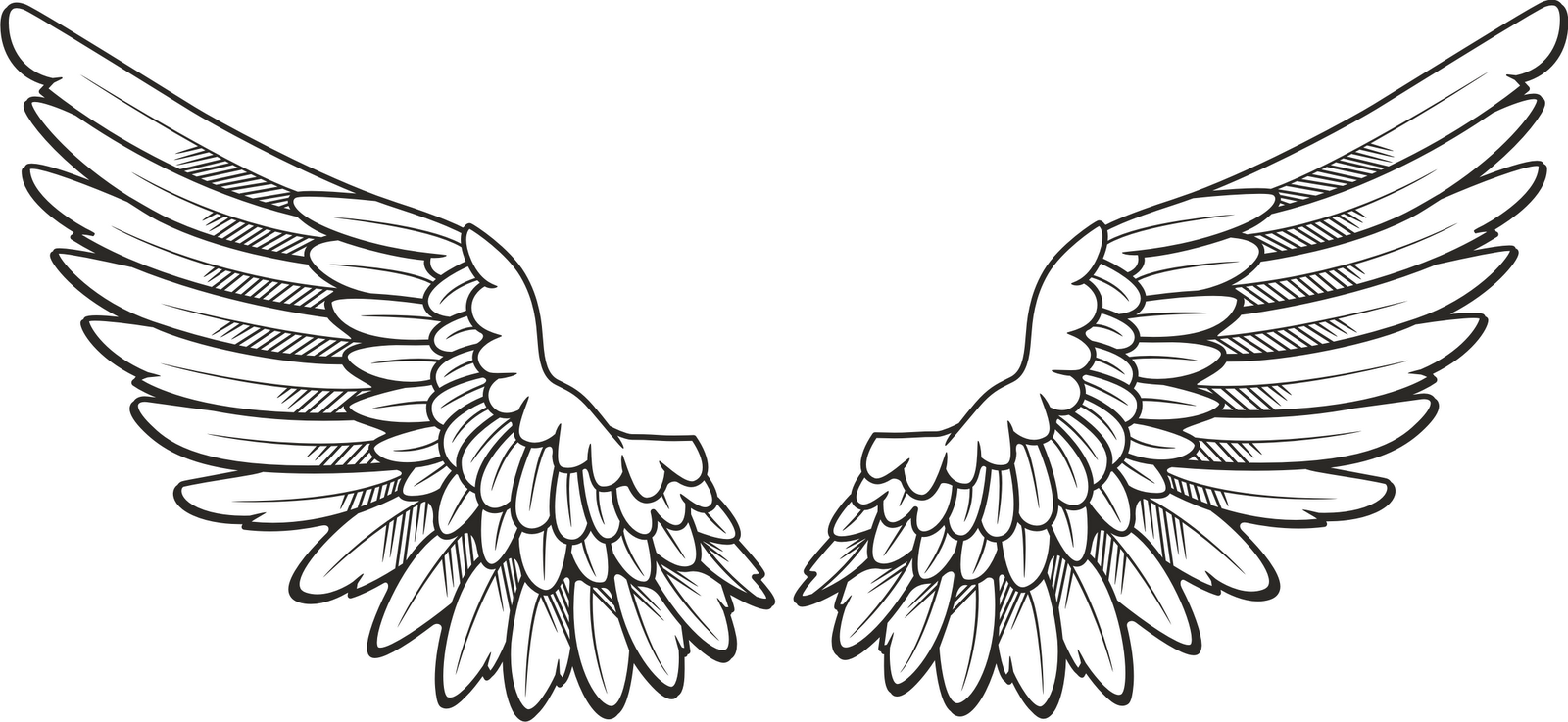 wings on Pinterest | Angel Wings, Angel Wings Drawing and Clip Art