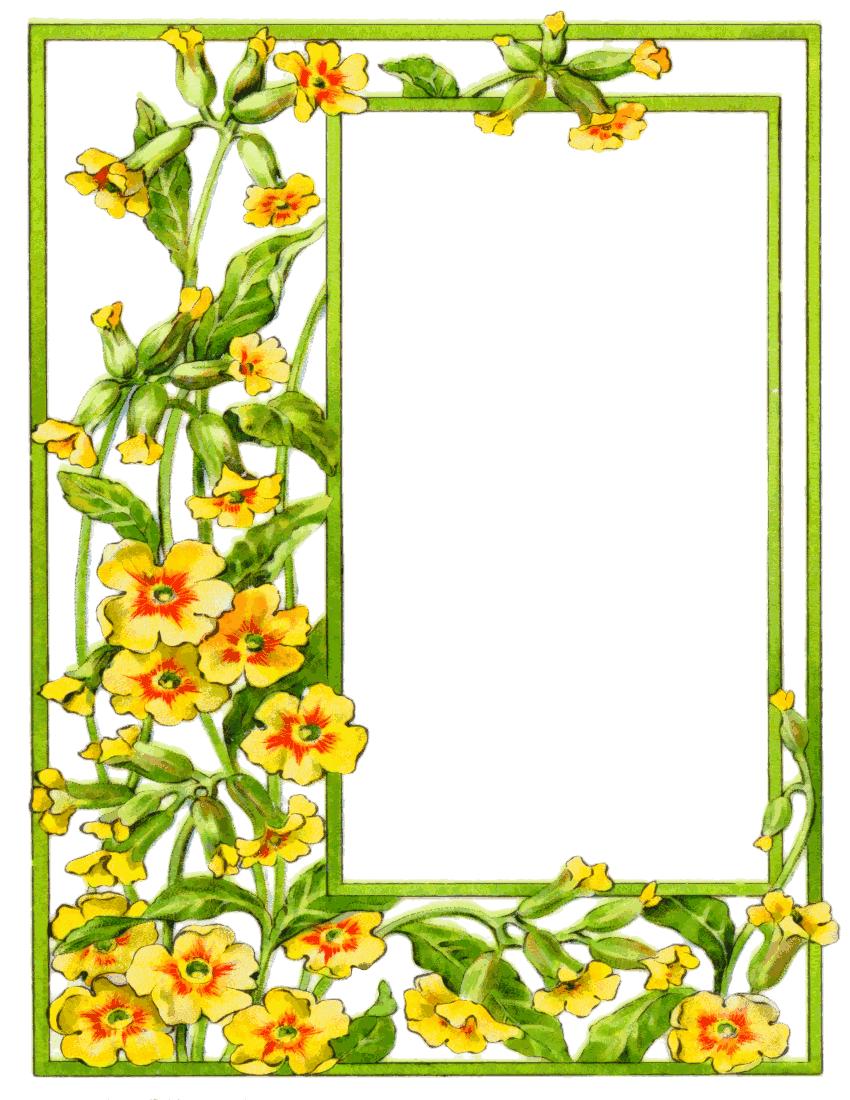Flower Frame Clipart Bright Summer Flowers Border