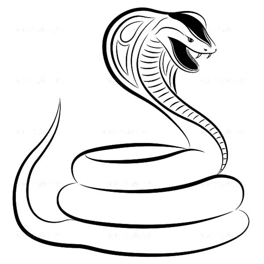 realistic cobra coloring pages - photo#32