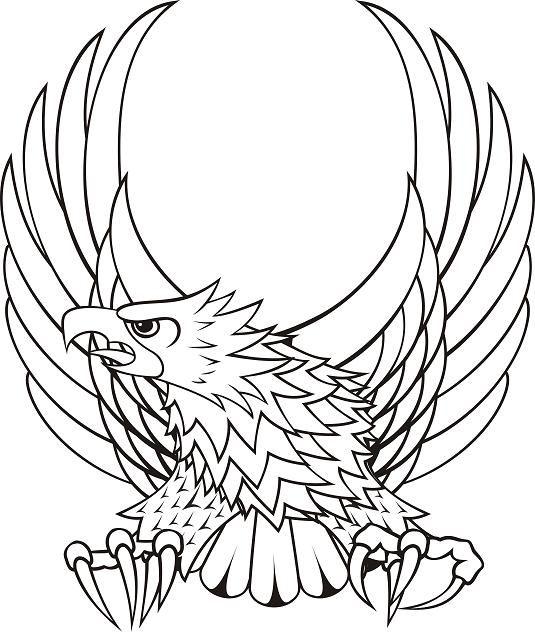 outline of a bald eagle clipart best